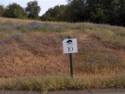 3225-(Lot 10) Rustic Woods Court - Photo 1
