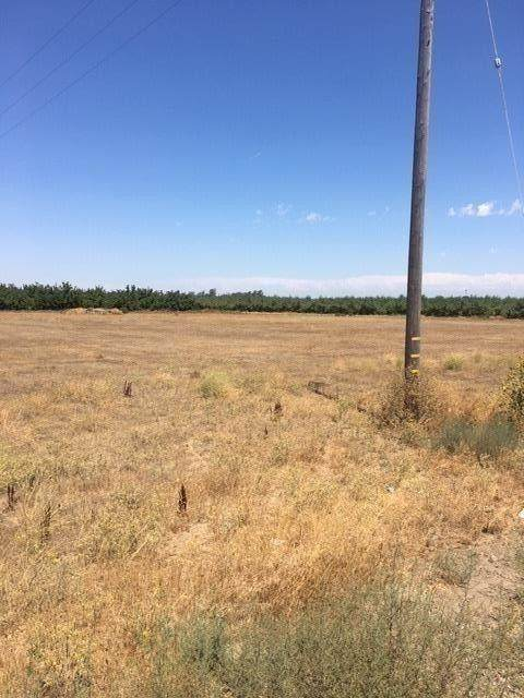 24483 E State Route 120 Highway, Escalon, CA 95320 (MLS #20051724) :: 3 Step Realty Group