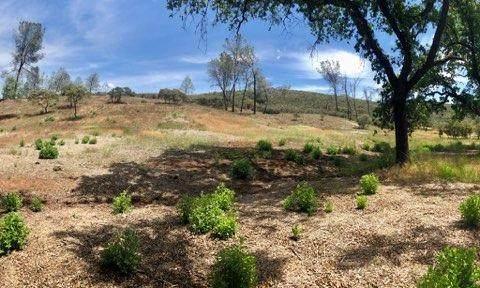 0 Hickok, El Dorado Hills, CA 95762 (MLS #20057893) :: Keller Williams - The Rachel Adams Lee Group