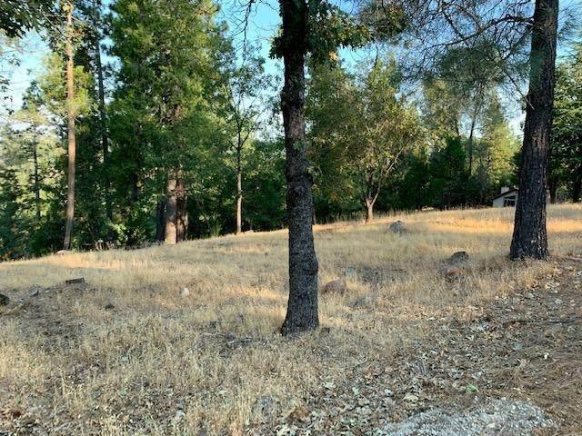 5015 Shooting Star, Pollock Pines, CA 95726 (MLS #20058522) :: Dominic Brandon and Team