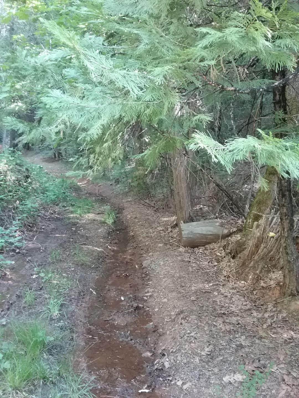 16915 Antelope Drive - Photo 1