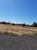 0 Alta Mesa Road, Wilton, CA 95693 (MLS #20062882) :: Heidi Phong Real Estate Team