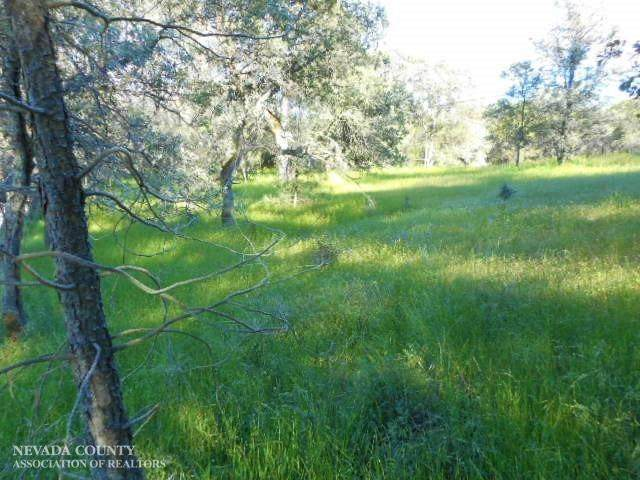 14725 Beyers Lane, Grass Valley, CA 95949 (#20063545) :: Jimmy Castro Real Estate Group