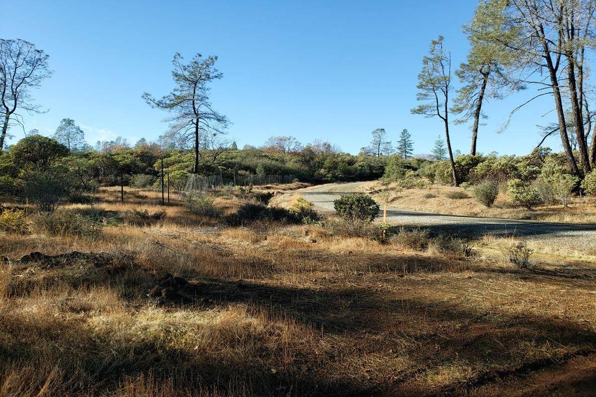 9022 Amoruso Lane - Photo 1