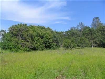 0 Lot 3 Dillon Circle, Newcastle, CA 95658 (MLS #20081689) :: The MacDonald Group at PMZ Real Estate