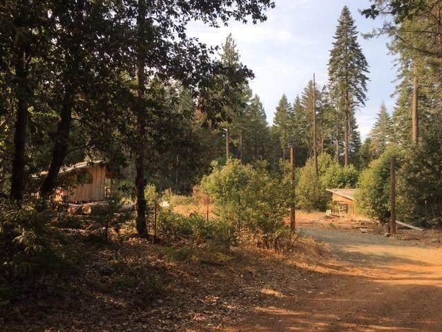 16670 Eagle Trail - Photo 1
