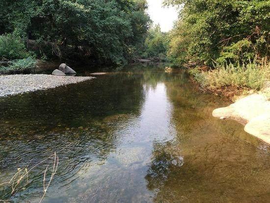 4440 Cosumnes View Trail - Photo 1