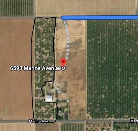 0 Marine Ave, Arbuckle, CA 95912 (MLS #221005588) :: REMAX Executive