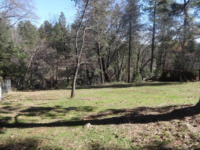 10511 Bragg Avenue, Grass Valley, CA 95945 (MLS #221011879) :: Heidi Phong Real Estate Team