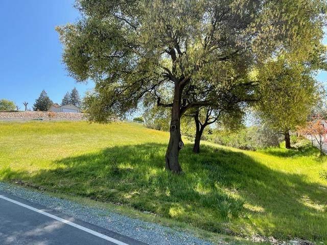 2894 Stagecoach Drive, Valley Springs, CA 95252 (MLS #221023638) :: Keller Williams - The Rachel Adams Lee Group