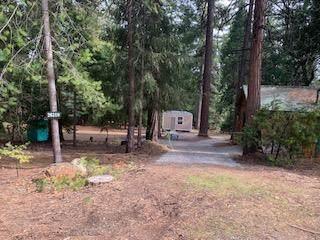 26310 Shake Ridge Road, Volcano, CA 95689 (MLS #221030578) :: Keller Williams - The Rachel Adams Lee Group