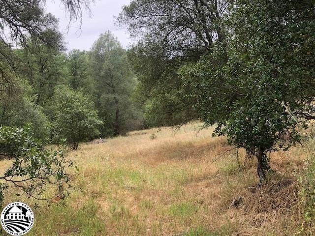 11909 Preston Place, Sonora, CA 95370 (MLS #221033866) :: Keller Williams Realty