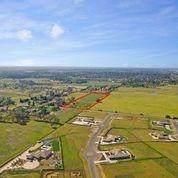 0 Sheldon Road, Elk Grove, CA 95624 (MLS #221035050) :: The MacDonald Group at PMZ Real Estate