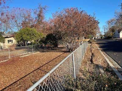 119 Almond Avenue, Manteca, CA 95337 (MLS #221036363) :: Live Play Real Estate | Sacramento