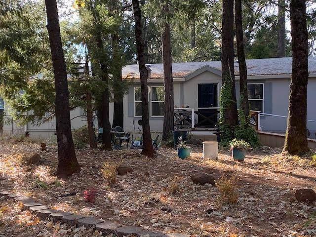 14159 Skyway, Magalia, CA 95954 (MLS #221046421) :: Live Play Real Estate | Sacramento