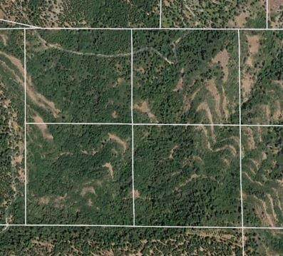 0 S Summet Level, Mountain Ranch, CA 95248 (MLS #221047446) :: Heidi Phong Real Estate Team