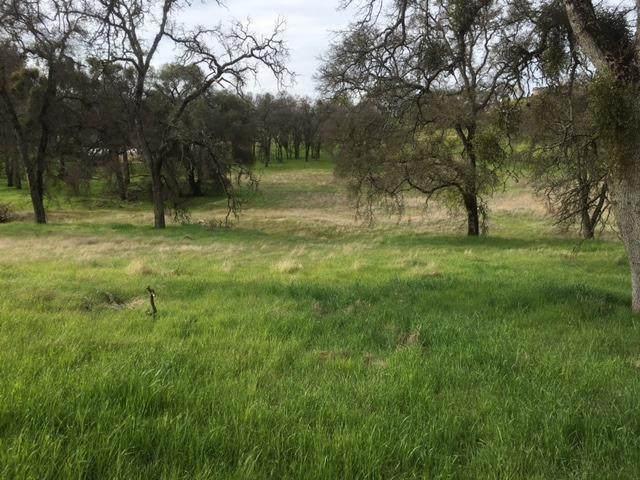 2756 Merced Falls, La Grange, CA 95329 (MLS #221047504) :: CARLILE Realty & Lending