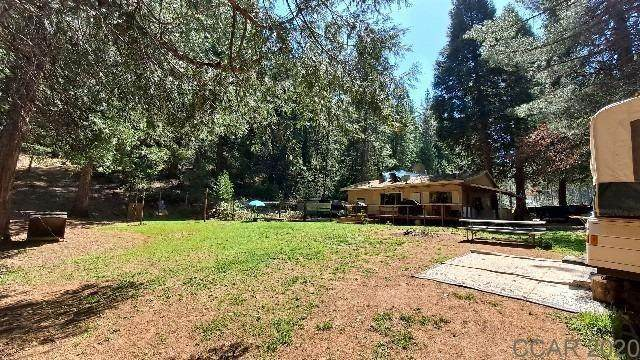 8450 E Summit Level Road, Camp Connell, CA 95248 (MLS #221047993) :: Heidi Phong Real Estate Team