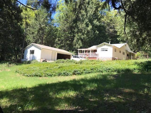 13164 N Day Road, Grass Valley, CA 95945 (MLS #221048787) :: Keller Williams - The Rachel Adams Lee Group