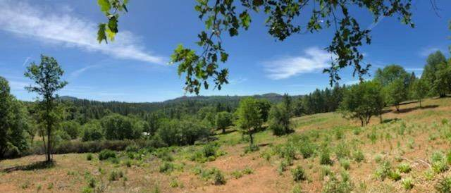 5410 E Old Emigrant Trail, Mountain Ranch, CA 95246 (MLS #221051806) :: CARLILE Realty & Lending