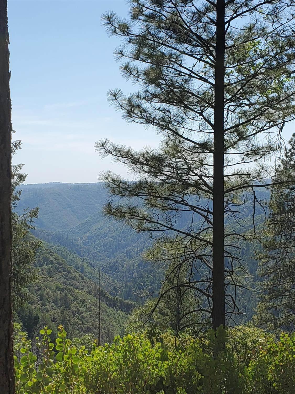 0 3820 Bear Ridge Rd - Photo 1