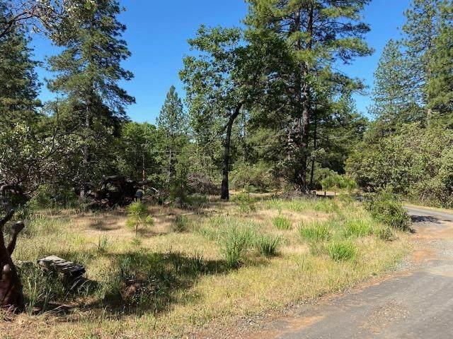 0 Timber Ridge Road, Pine Grove, CA 95665 (MLS #221052498) :: CARLILE Realty & Lending