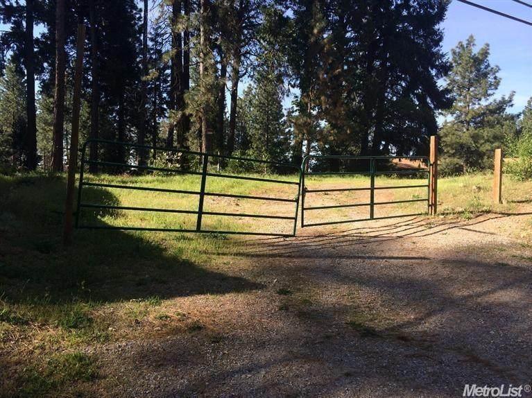 5950 Pony Express Trail - Photo 1