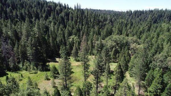 490 Omo Ranch Road - Photo 1