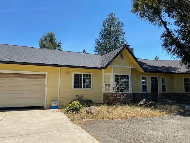 1250 Live Oak Road, Colfax, CA 95713 (MLS #221062902) :: 3 Step Realty Group