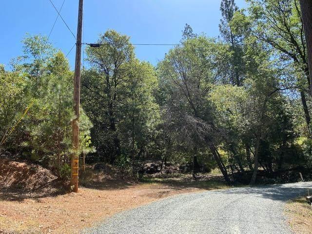 0 Timber Ridge Road, Pine Grove, CA 95665 (MLS #221063993) :: Live Play Real Estate   Sacramento