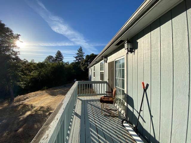 2700 Freshwater Lane, El Dorado, CA 95623 (MLS #221067491) :: Deb Brittan Team