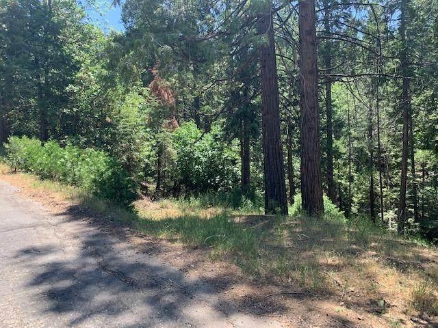 17059 E Brookside Drive, Sonora, CA 95370 (MLS #221069523) :: Keller Williams Realty
