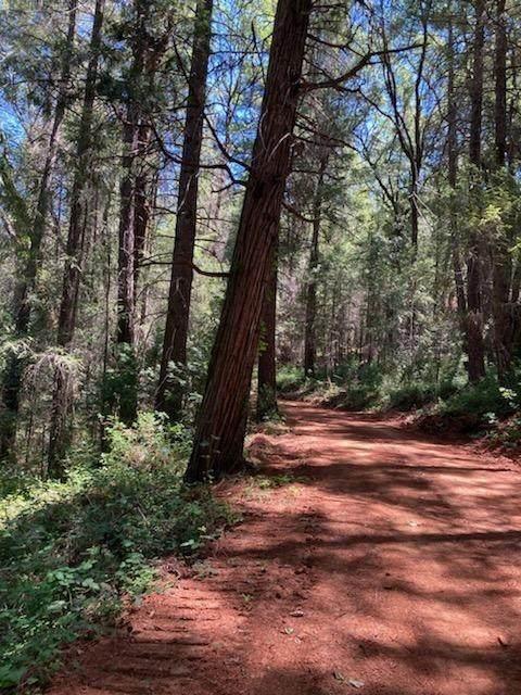 2 Porter Ranch Road - Photo 1
