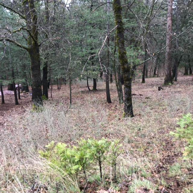 12890 Wildwood Ct - Photo 1