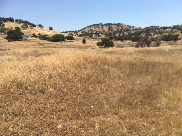 1061 Josefina Way, La Grange, CA 95329 (MLS #221085631) :: Heidi Phong Real Estate Team