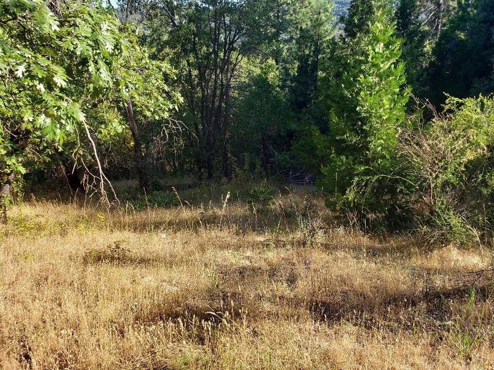 5148 Wylderidge Drive - Photo 1