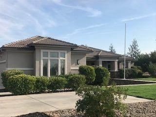 9720 Stablegate Road, Wilton, CA 95693 (MLS #221090550) :: REMAX Executive
