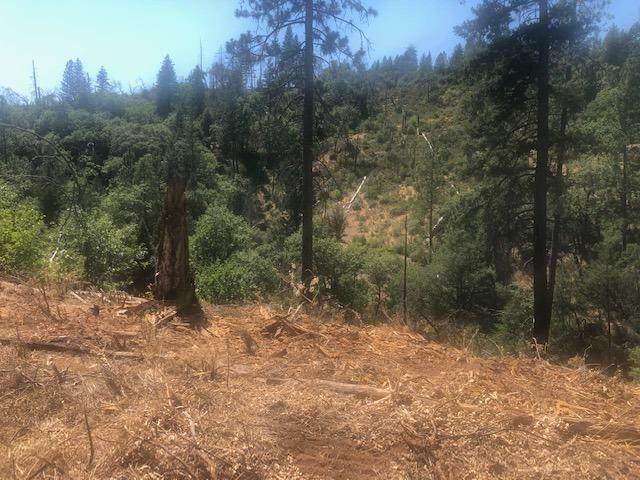 0 Davos Court, Weimar, CA 95736 (MLS #221091858) :: 3 Step Realty Group