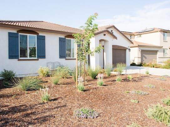 2635 Pink Muhly Drive, Manteca, CA 95337 (MLS #221093760) :: 3 Step Realty Group