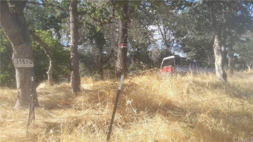 15850 Apache Trail - Photo 1