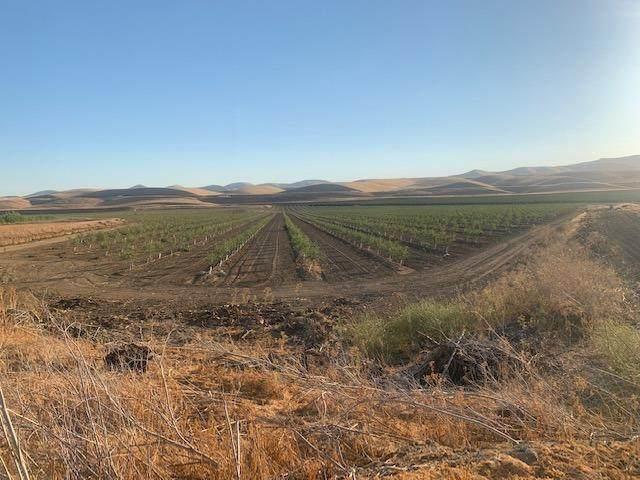 0 Hwy 5 Highway, Patterson, CA 95363 (MLS #221107998) :: Heather Barrios