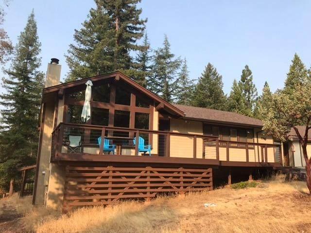 27441 Madrone Place, Pioneer, CA 95666 (MLS #221121005) :: Keller Williams - The Rachel Adams Lee Group
