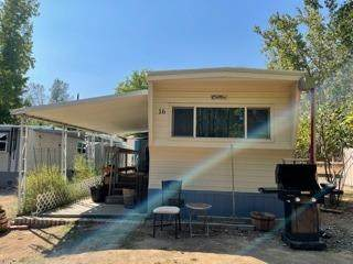 1525 Cold Springs Road #16, Placerville, CA 95667 (MLS #221123218) :: Dominic Brandon and Team