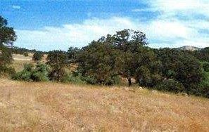 10 Thunder Road, Catheys Valley, CA 95306 (MLS #18077793) :: Keller Williams Realty Folsom