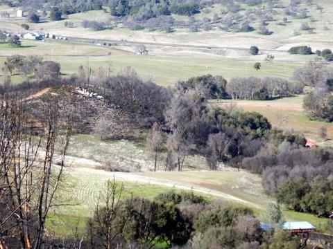 0 Mt Bullion Cut Off, Mariposa, CA 95338 (MLS #19004422) :: Keller Williams - Rachel Adams Group