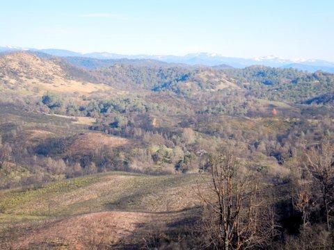0 Mt. Bullion, Mariposa, CA 95338 (MLS #19005007) :: Keller Williams - Rachel Adams Group