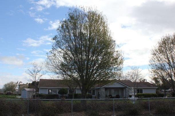 22584 S Bird Road, Tracy, CA 95304 (MLS #19010721) :: Keller Williams Realty