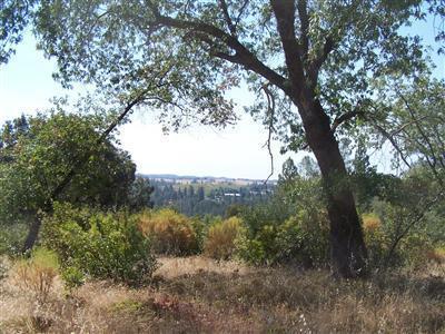 100-Acres American Flat Road, Fiddletown, CA 95629 (MLS #19016551) :: Keller Williams - Rachel Adams Group