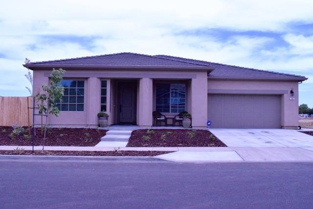 110 Marguerite Lane, Patterson, CA 95363 (MLS #19033826) :: Heidi Phong Real Estate Team