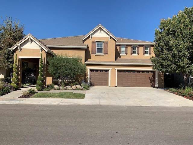 705 Orestimba Peak Drive, Newman, CA 95360 (MLS #19069724) :: The MacDonald Group at PMZ Real Estate